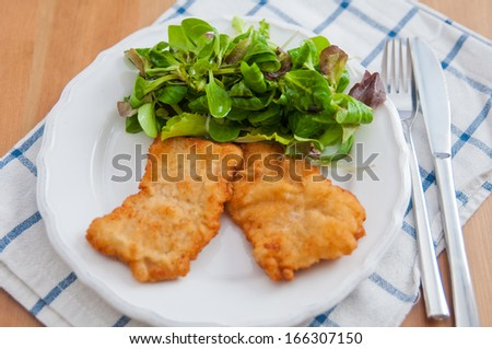 Wiener Schnitzel with salad  - stock photo
