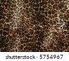 Wild African animal skin texture - stock photo