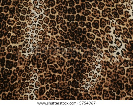 Wild African animal skin texture - stock photo