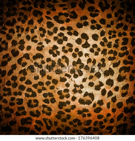 Wild animal pattern background or texture close up - stock photo