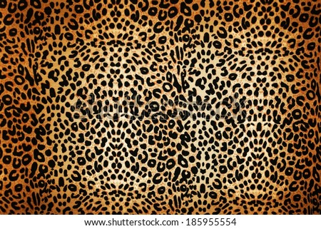 wild animal pattern background or texture close up - material - stock photo