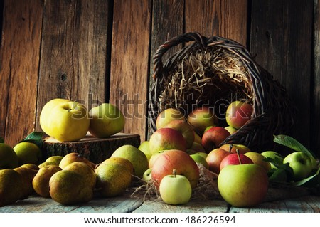 Wild apples and pears in basket