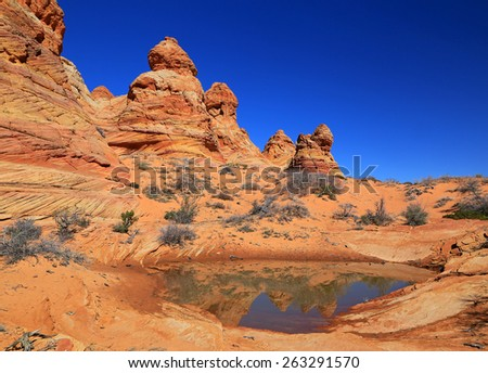 Wild Arizona desert landscape, USA. - stock photo