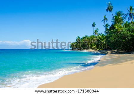 Wild beach Costa Rica - stock photo