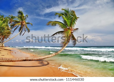 wild beautiful beach in Sri lanka - stock photo