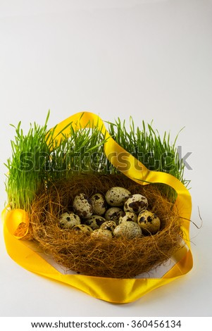 Wild bird eggs in a nest in fresh green grass with a yellow satin ribbon on white background. Easter background. Easter symbol. Top view with copy space. Vertical - stock photo