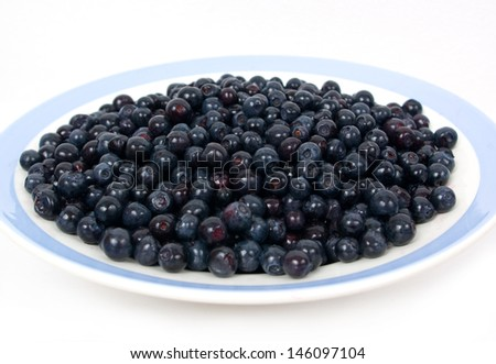 Wild blueberries in a plate isolated on white background