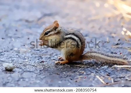 Wild chipmunk eating peanut illustration - stock photo