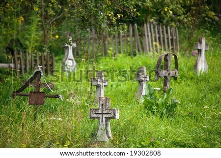 wild cimetery in romanian country, shallow deep of field