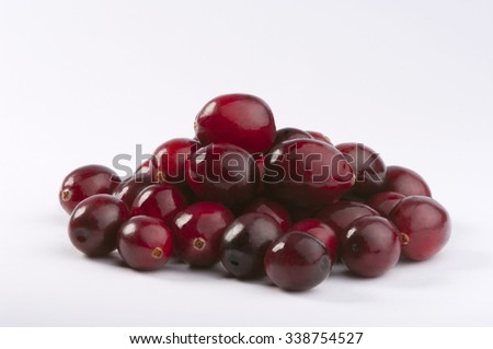 Wild cranberries isolated on white with smooth drop shadow. Studio shot retouched