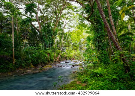 Wild deep forest and river in National Park - stock photo