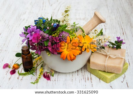 wild flower and herb leaf in mortar on a wooden background - stock photo