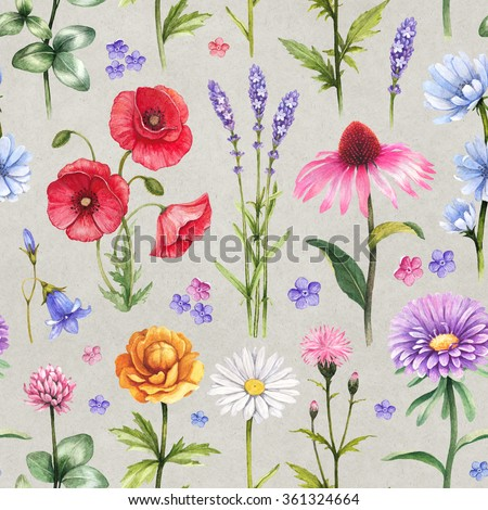 Wild flowers illustrations. Watercolor seamless pattern