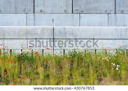 wild flowers meadow against concrete wall