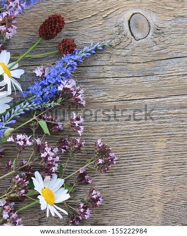 Wild flowers on an old wooden background - stock photo