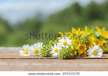 Wild flowers on old wooden table against the background of the landscape. The background for the text. - stock photo
