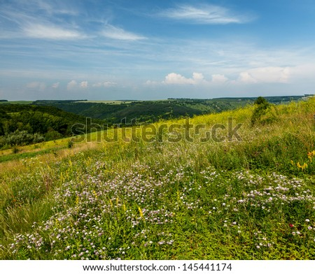 Wild flowers on the slopes of the canyon of the Dniester - stock photo