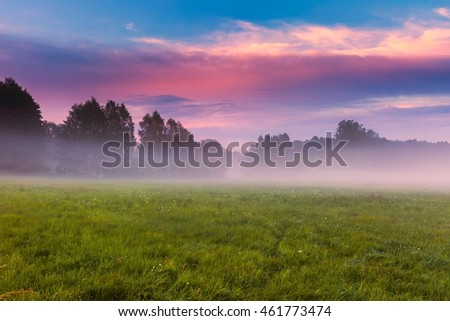 Wild foggy meadow landscape. Summer grassland under sunset or sunrise sky and fog. Misty landscape.