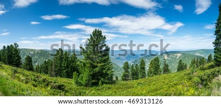 stock-photo-wild-forests-of-siberia-4693