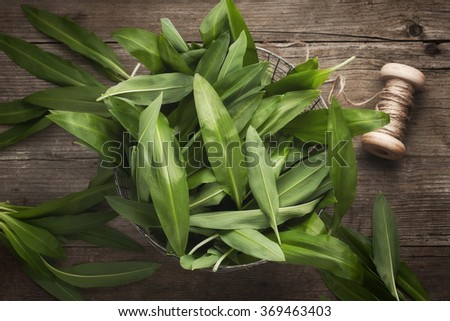 Wild garlic leafs