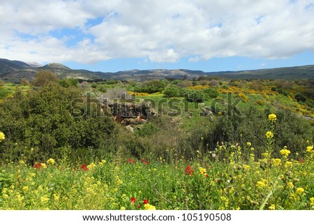 Wild Landscape With Golan Heights,Israel - stock photo