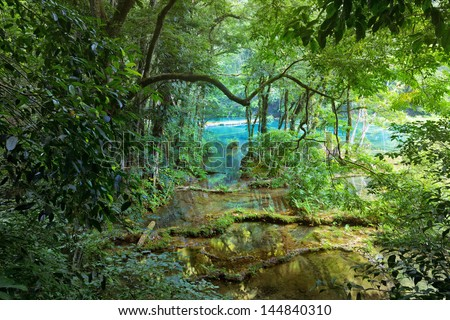 Wild Mayan jungle in the national park Semuc Champey Guatemala. - stock photo