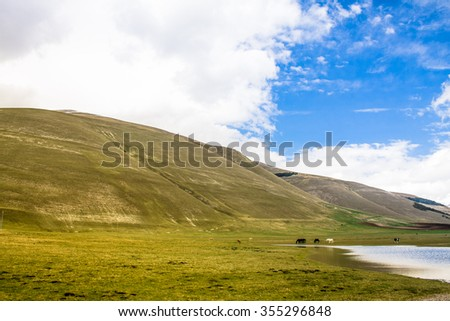 Wild mountain landscape