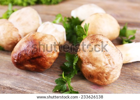 Wild mushrooms with herbs and greens on table - stock photo