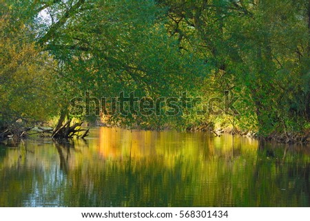 wild nature water lake landscape background