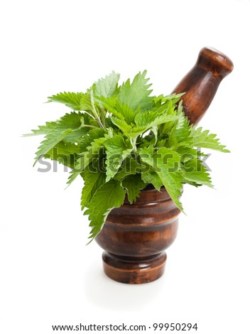 Wild nettle,mortar and pestle isolated on white - stock photo