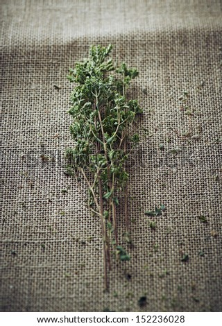 Wild oregano on burlap; dried