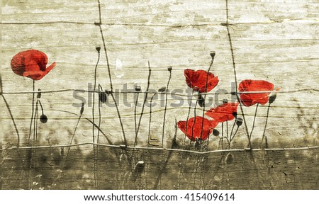 Wild red poppies inside the garden fence on grunge wooden background, retro style - stock photo