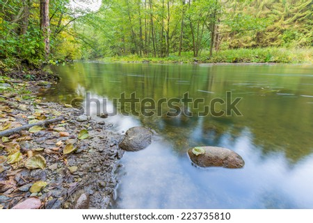 wild river in forest - stock photo
