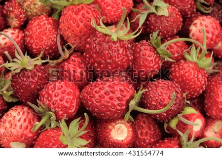 Wild strawberry basket / strawberry background / strawberry basket