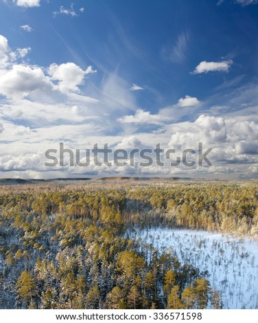 Wild taiga in West Siberia. Aerial view. Frost in sunny day. White clouds and blue sky - stock photo