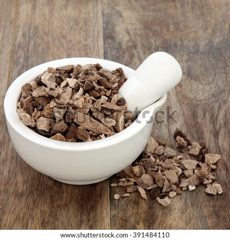 Wild yam root herb used in natural alternative herbal medicine in a mortar with pestle over old wood background. Dioscoria villosa. Shan yao.   - stock photo