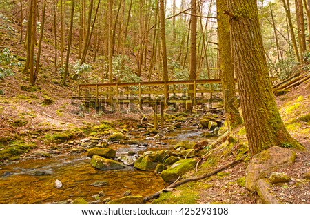 Wilderness Bridge on a Forest trail in Cumberland Gap National Park in Kentucky - stock photo