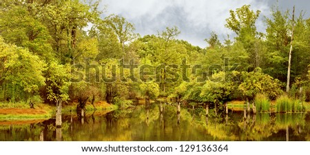 Wilderness panoramic. - stock photo