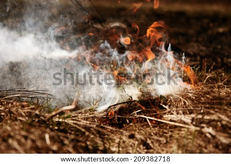 Wildfire. Fire. Global warming, environmental catastrophe. Concept man helpless before  natural disaster. Protection of the environment. Survival, the preservation of life - stock photo