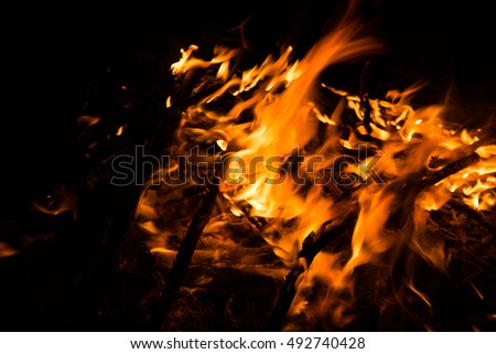 Wildfire,Forest fire,Fire flames,Arson or nature disaster,Bonfire background