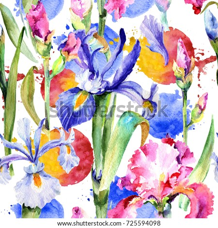 Wildflower iris flower pattern in a watercolor style. Full name of the plant: pink iris. Aquarelle wild flower for background, texture, wrapper pattern, frame or border.