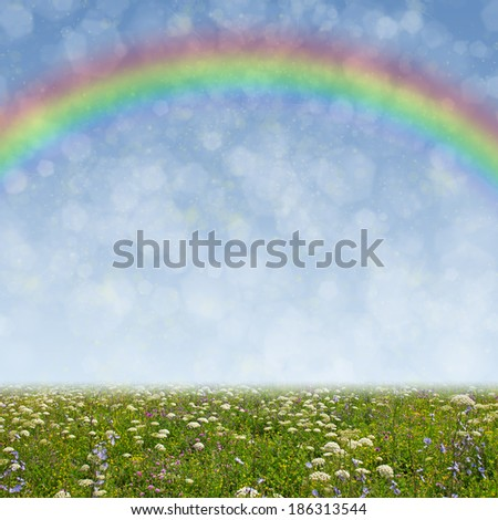 Wildflower meadow, blue sky and rainbow as a background - stock photo