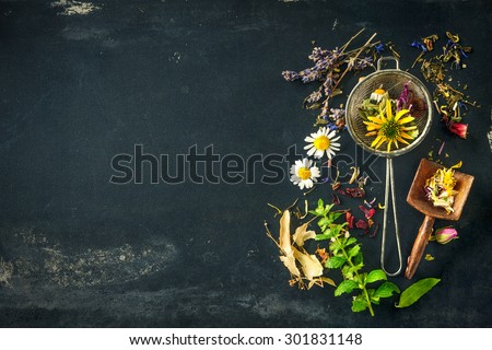 Wildflowers and various herbs for herbal tea - stock photo