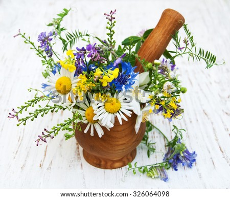 wildflowers with mortar and pestle on a old wooden background - stock photo