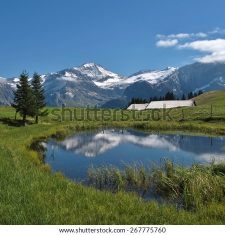 Wildhorn mirroring in a pond on the Wispile - stock photo