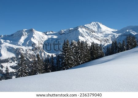 Wildhorn, view from the Wispile, mountain near Gstaad