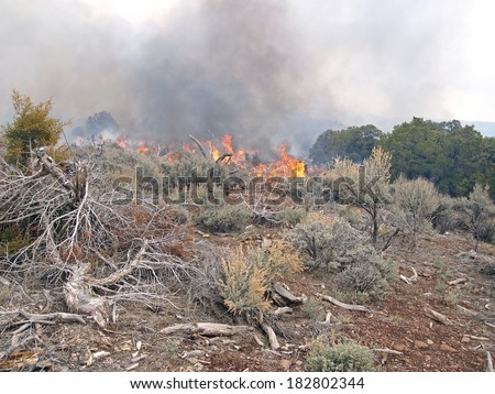 Wildland fire fighters use prescribed fire to manage rangeland vegetation. - stock photo