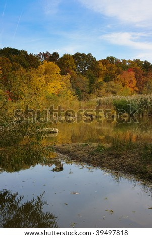 Wildlife Sanctuary in the Fall