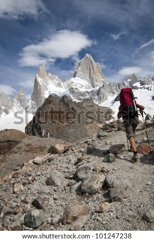 Wildness in Patagonia, Mount Fitz Roy - stock photo