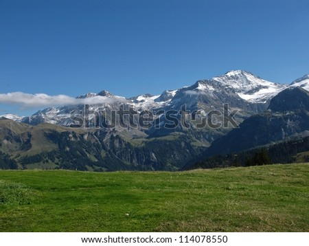 Wildstrubel And Green Meadow - stock photo